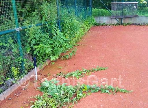 Platzwartservice Frühjahrsinstandsetzung Tennisplatzbau